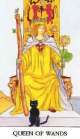 Queen of wands.jpg