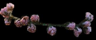 Tumblr mkcu9v7qEt1s9yt1no1 400.png