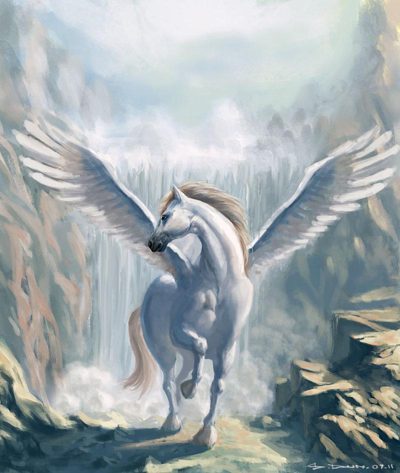 Pets/Ryann's Pegasus