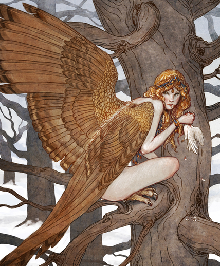 Harpie image.png