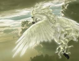 Pets/Aura's Pegasus
