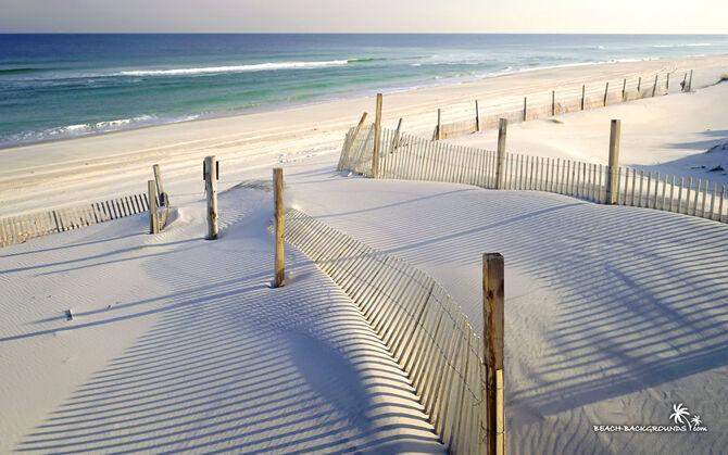 White-sandy-beach-wallpaper-1680x1050.jpg
