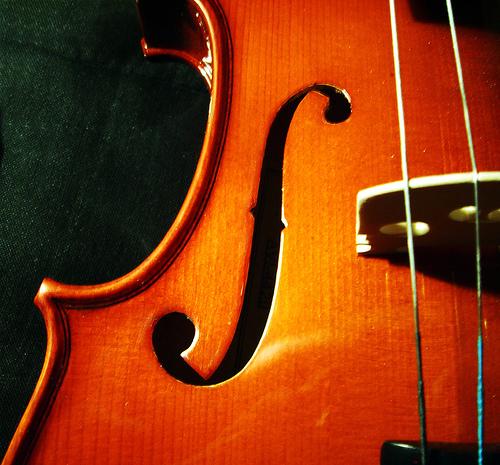Harony's violin.jpg