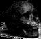 Engraved skull.png