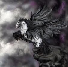 Pets/Essence's Pegasus