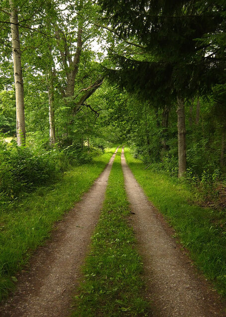 The road goes ever on by ina fahlsten-d4rhthg.jpg