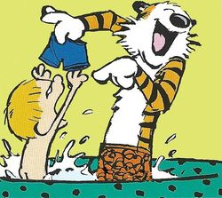 Calvin&HobbesTubPlay.jpg