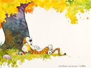 Calvin-hobbes-original-artwork