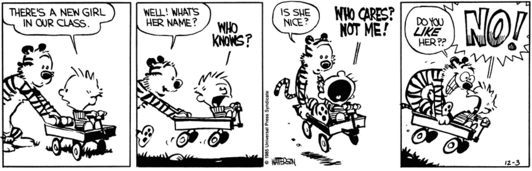 Story arcs  The Calvin and Hobbes Wiki  Fandom