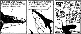 Calvin the Shark.png