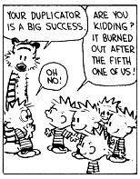 Calvin, Hobbes and Dupes.jpg