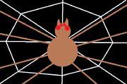 Tarantula flag alternative.jpg