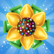 Sweet sunshine candy
