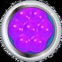 Purple Hexademical