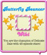 Butterfly Bouncer
