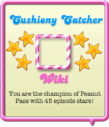 Cushiony Catcher