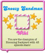 Snoozy Sandman