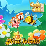 New levels released 169 2