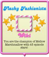 Flashy Fashionista