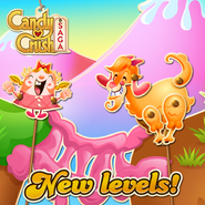 New levels released 153