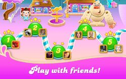 CCSS-Play with friends!.jpeg