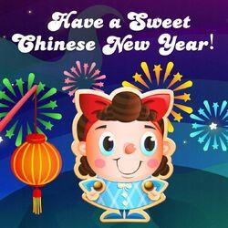 Chinese new year 2017.jpg