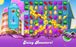 CCSS-Juicy Boosters.jpg