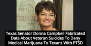 Texas state Senator Donna Campbell.png