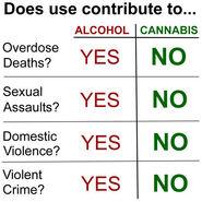 Alcohol versus cannabis
