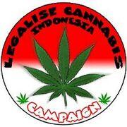 Indonesia legalise cannabis campaign.jpg