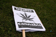 Glasgow Legalise Cannabis.jpg