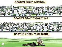 Deaths from alcohol, cigarettes, and marijuana.jpg