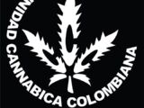 Colombia. Cannabis-related links