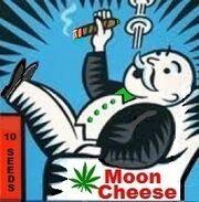 Moon Cheese Art.jpg