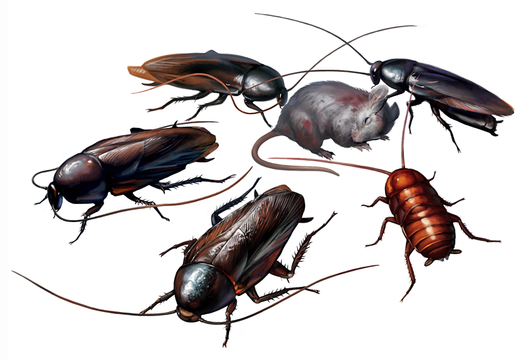 RE2Cockroaches.png
