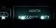 NorthRaccoonSigns