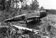 A6M3 Zero Hamp at Buna 1943 V-187