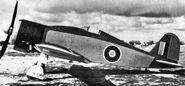 Fiat-G-50--RAF--2-
