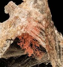 Copper-Gypsum-203925