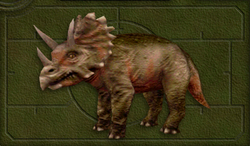 Menu image of Chasmosaurus