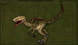 Menu image of Allosaurus