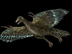 Official Action Forms Archaeopteryx render