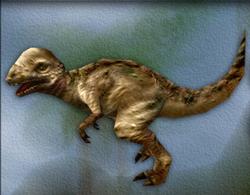 Menu image of Pachycephalosaurus