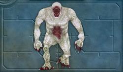 Menu image of Yeti