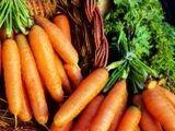 List of Carrots