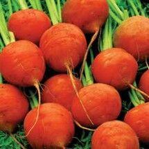 Carrot-paris-market-lg-215x215.jpg