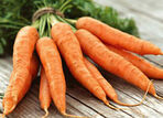Carrot Wiki Guides