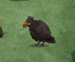 Niep's vulture