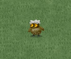 Chirb's owl