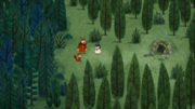 Forest Recad 2.png